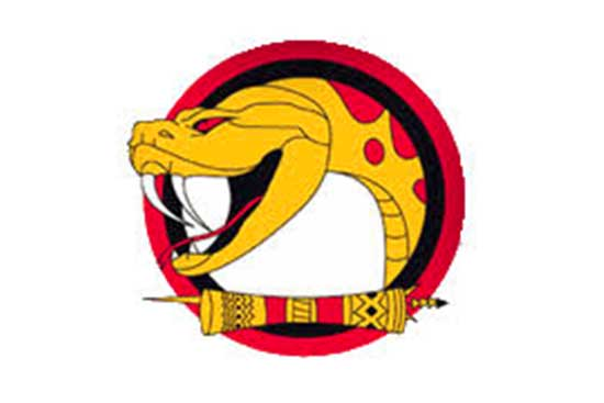 PNG Rugby League POM Vipers